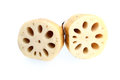 Lotus Root Stock Image
