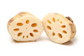 Lotus root on the white background Royalty Free Stock Image