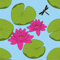 Lotus seamless pattern Stock Image