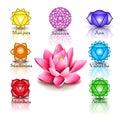 Lotus and Seven chakras