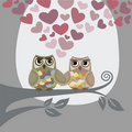 Love is in the air for two owls Royalty Free Stock Photography