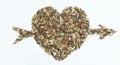 Love arrow pierced seed berry heart Royalty Free Stock Photos