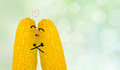 Love the couple corn in Royalty Free Stock Image