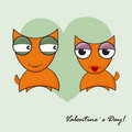 Love date of two foxes Stock Images
