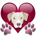 Love for dogs Stock Photos