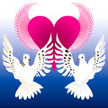 Love Doves Royalty Free Stock Photo