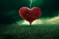 Love at first sight tree in the shape of heart hit from a lightning Stock Image