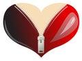 Love Heart boobs Royalty Free Stock Photo