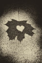 Love heart on leaf shadow Stock Photos