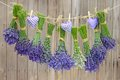 Love hearts and lavender hand stitched of cloth bunches of hanging on a leash in front of weathered wood Stock Photo
