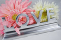 Love in letters with flowers Royalty Free Stock Photo
