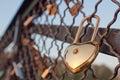 Love locks in Paris Royalty Free Stock Photo