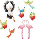 Love me birds collection isolated on white background Royalty Free Stock Image