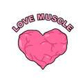 Love muscle. Strong Athletic heart with muscles and veins. Vecto Royalty Free Stock Photo