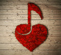 Love music Royalty Free Stock Photo