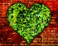 Love nature the brick wall background for concept Royalty Free Stock Image