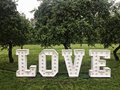 Love neon letters in park Royalty Free Stock Photo