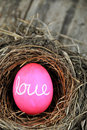 Love Nest Royalty Free Stock Images