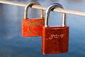 Love padlocks on cable Royalty Free Stock Image