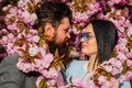 Love, romance and beauty concept. couple viewing cherry blossom at park. People in spring. sweet kiss. Couple stand near Royalty Free Stock Photo