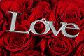 Love and roses Royalty Free Stock Photo