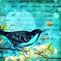 Love song mixed media background with french text Royalty Free Stock Photos