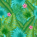 Tropical plants, interweaving different in the form of banana and palm leaves, different shades of green