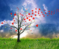 Love tree with heart leaves dream screensaver blu sky background Stock Photos