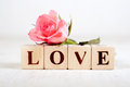 Love word with rose written in wooden blocks pink Royalty Free Stock Image