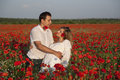 Love a young couple in a poppy field Royalty Free Stock Image