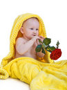 Lovely baby holding a red rose Royalty Free Stock Photo