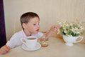 Lovely bouquet little boy drinks tea and eats with a spoon and honey on the table a of daisies Stock Photos