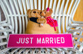 Lovely Couple Bears and JUST MARRIED Sign Royalty Free Stock Photo