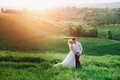 Lovely couple, bride and groom posing in field during sunset, lifestyle Royalty Free Stock Photo
