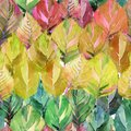 Lovely group of the autumn leaves like rainbow. Graphic bright floral herbal autumn orange yellow leaves pattern