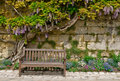 A Lovely Place to Rest Royalty Free Stock Photo