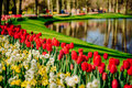 A lovely spring landscape park. Blooming flowers. Royalty Free Stock Photo