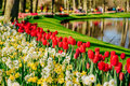 Lovely spring landscape park. Blooming flowers. Holland Royalty Free Stock Photo