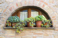 Lovely tuscan window in Volterra, Italy Royalty Free Stock Photo