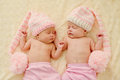 Lovely twins Royalty Free Stock Photo