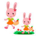 Lovely Walking rabbit Stock Image