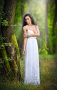 Lovely young lady wearing an elegant long white dress enjoying the beams of celestial light on her face in enchanted woods long h Royalty Free Stock Photos