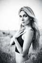 Lovely young woman on the field black and white portrait of Royalty Free Stock Images