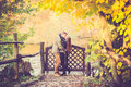 Lovers kissing in fall two near wooden fence with gates or autumn background Royalty Free Stock Image