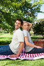 Lovers picnicking in the park Stock Photos
