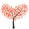 LoveTree Royalty Free Stock Photography