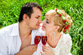 Loving couple celebrating together at picnic Royalty Free Stock Image