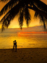 Loving couple decline at the sea a silhouette of a a palm tree Stock Image