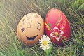 Loving egg in the grass Royalty Free Stock Photos
