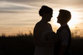 Loving gay couple married in front of beautiful sunset Royalty Free Stock Photo